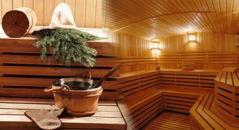 Что лучше баня из бруса или каркасная